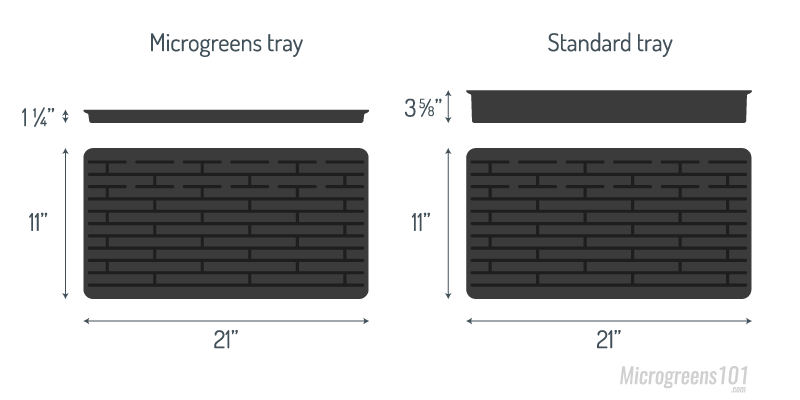 microgreens-trays-standard-trays-comparison